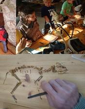 Safari paélontologique - Ateliers