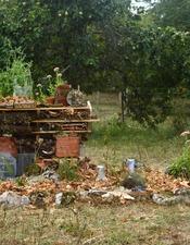Construction d'un jardin'hôtel à insectes / Atelier