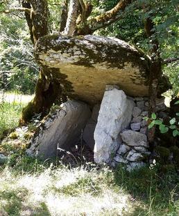 Balade et Conférence : Sentier des Dolmens