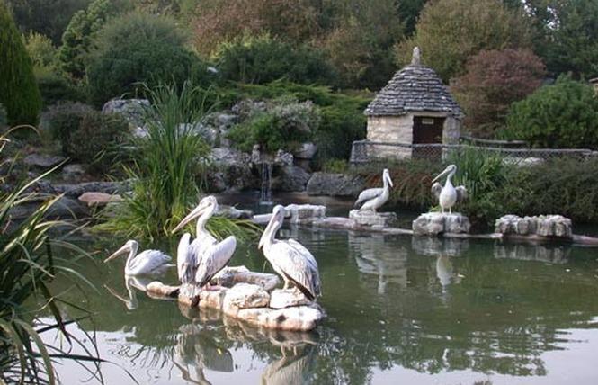 Parc Animalier de Gramat 27 - Gramat