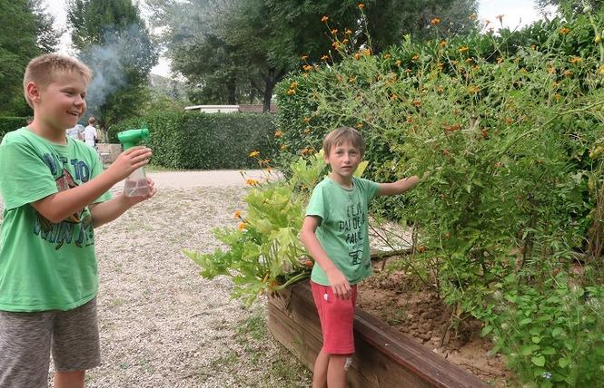 Camping le Terriol (municipal) 8 - Cajarc
