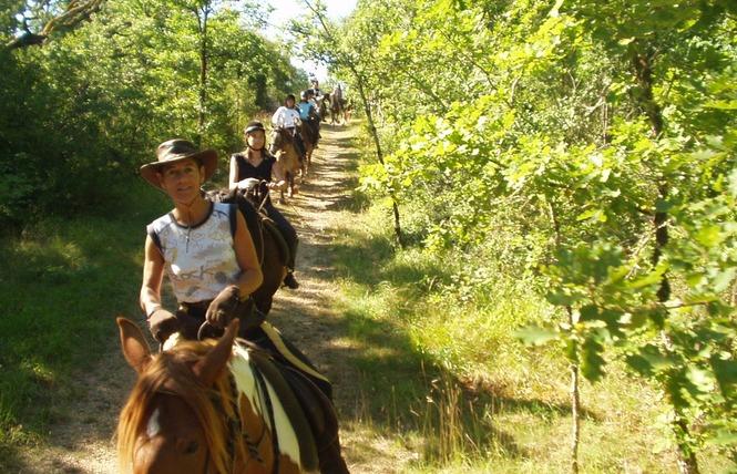Ferme Equestre Chez Valdine 2 - Calvignac