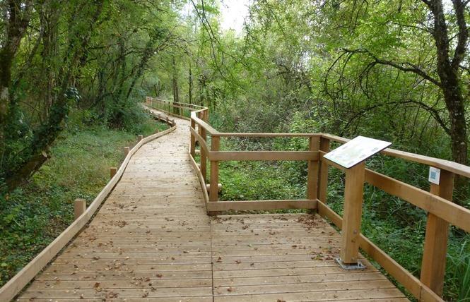 Réserve Naturelle Régionale du Marais de Bonnefont 17 - Mayrinhac-Lentour
