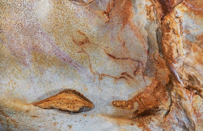 Grotte du Pech-Merle 10 - Cabrerets