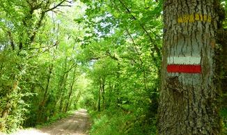 Kalapca Loisirs - VTT, Randonnée, Course orientation - Bouziès