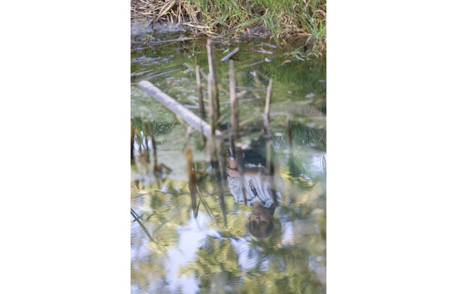 Réserve Naturelle Régionale du Marais de Bonnefont 13 - Mayrinhac-Lentour