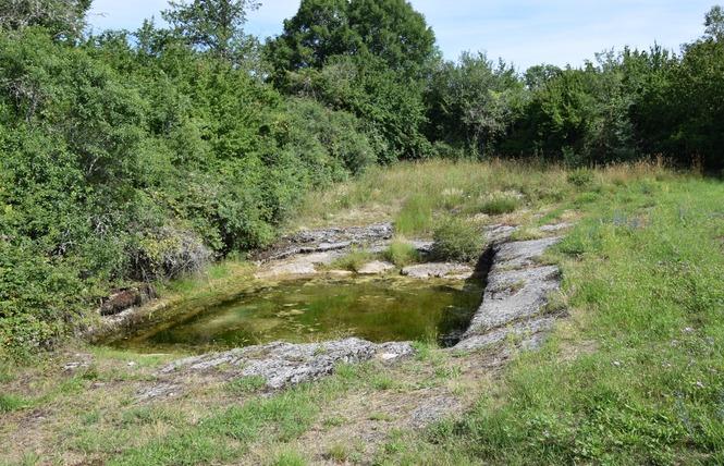 A Travers les Croix du Quercy 7 - Reilhac