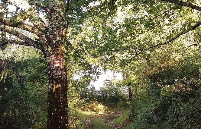 Le Chemin aux Deux Visages 3 - Thémines