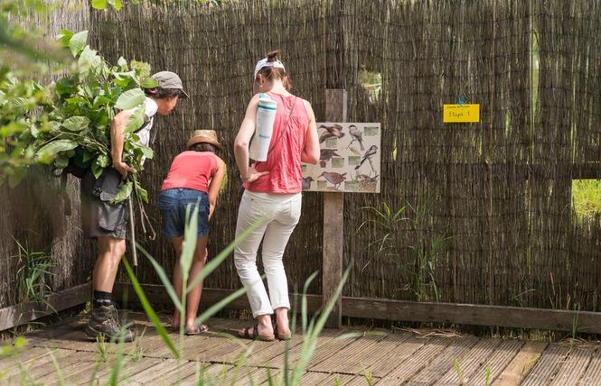 Réserve Naturelle Régionale du Marais de Bonnefont 23 - Mayrinhac-Lentour