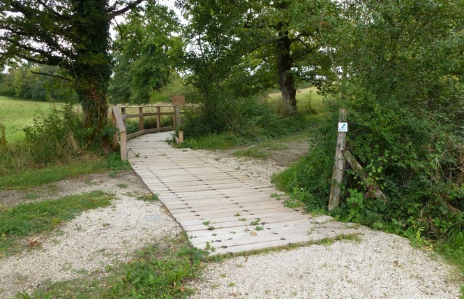 Réserve Naturelle Régionale du Marais de Bonnefont 18 - Mayrinhac-Lentour