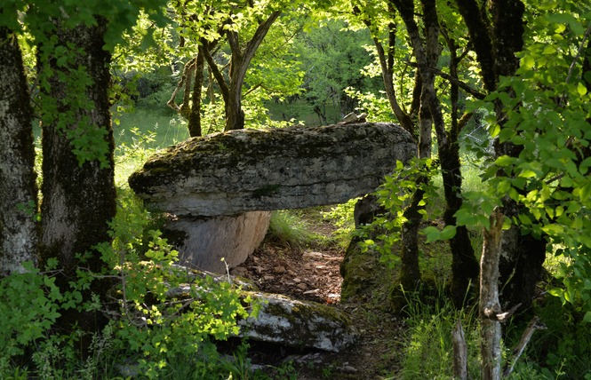 Les Dolmens de Limogne-en-Quercy 1 - Limogne-en-Quercy