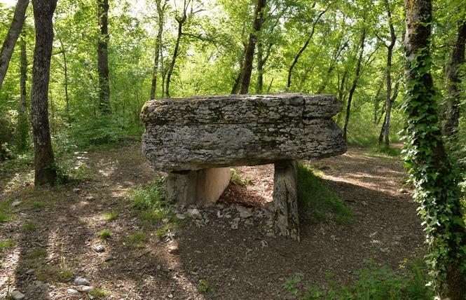 Les Dolmens de Limogne-en-Quercy 3 - Limogne-en-Quercy