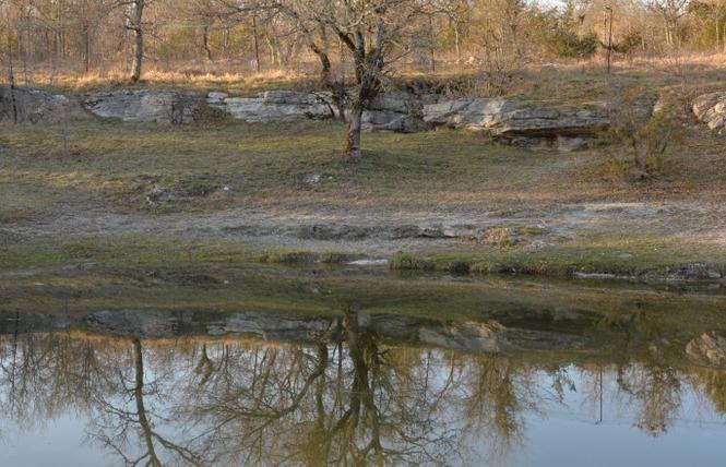 Les Dolmens de Limogne-en-Quercy 5 - Limogne-en-Quercy